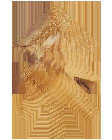 Northwood-Wood-Logo